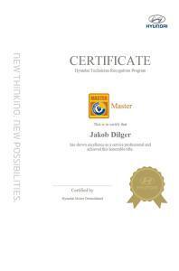 Hyundai Master Dilger
