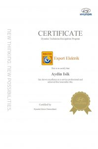 Hyundai Expert Isik